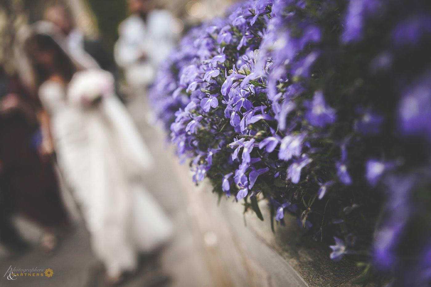 photographer_wedding_capri_19.jpg