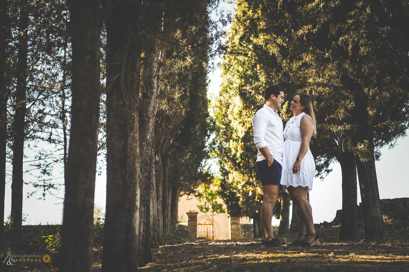 Romantic moment in the cypresses avenue