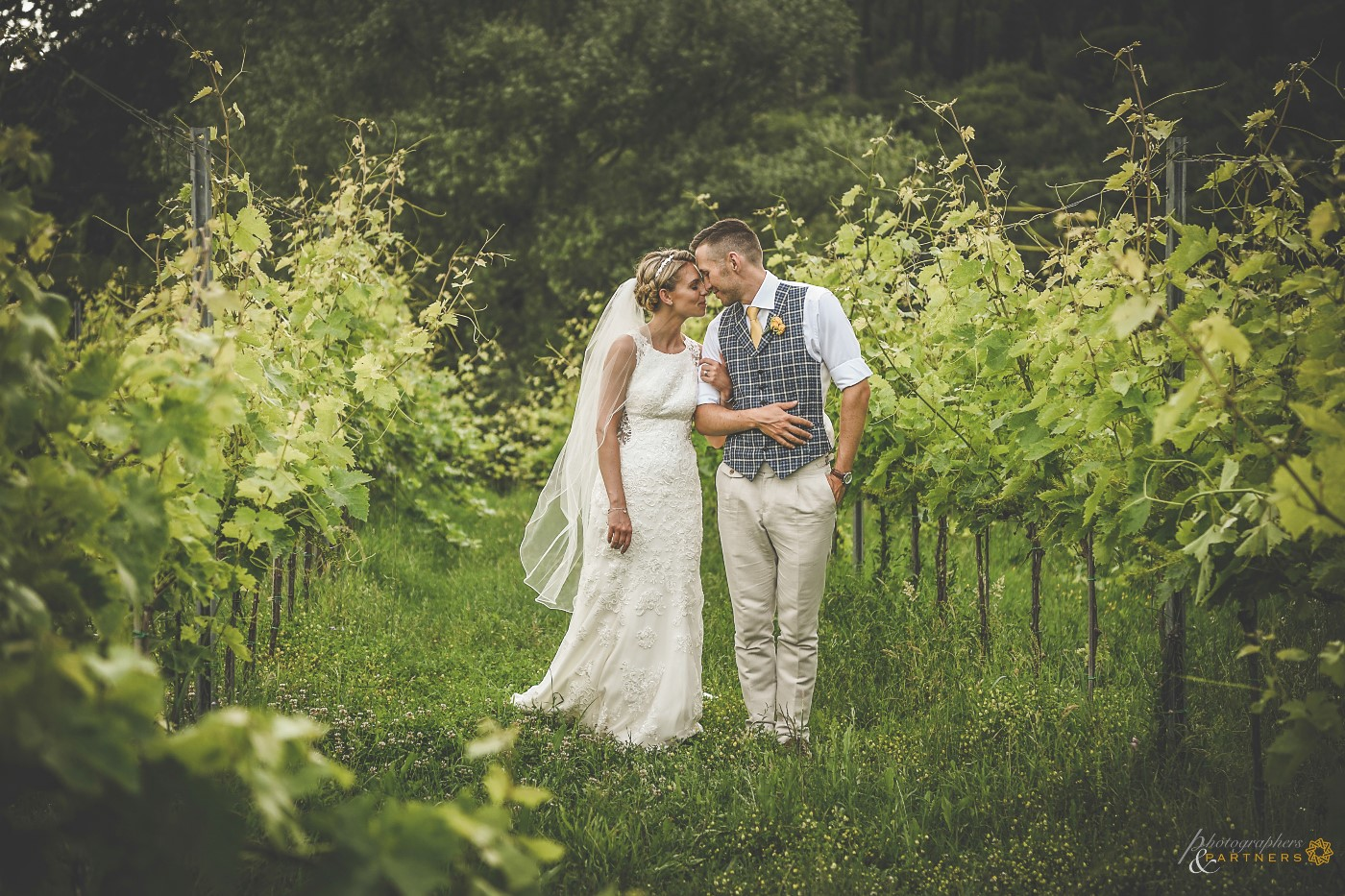 🍃 Romantic moment among the vineyards 🍃