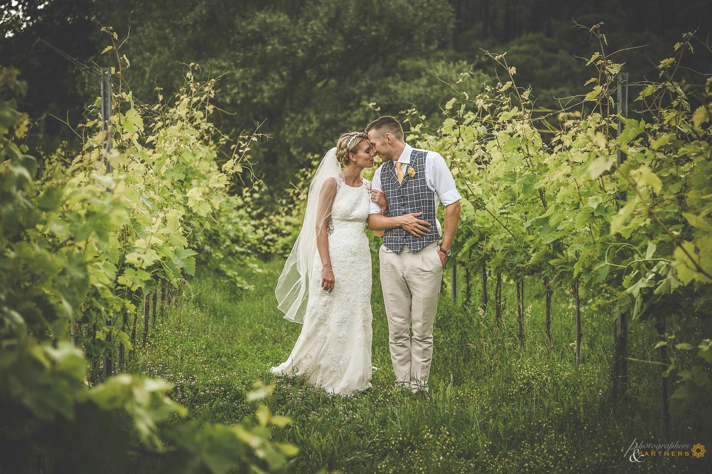 🍃 Romantic moment among the vineyards 🍃