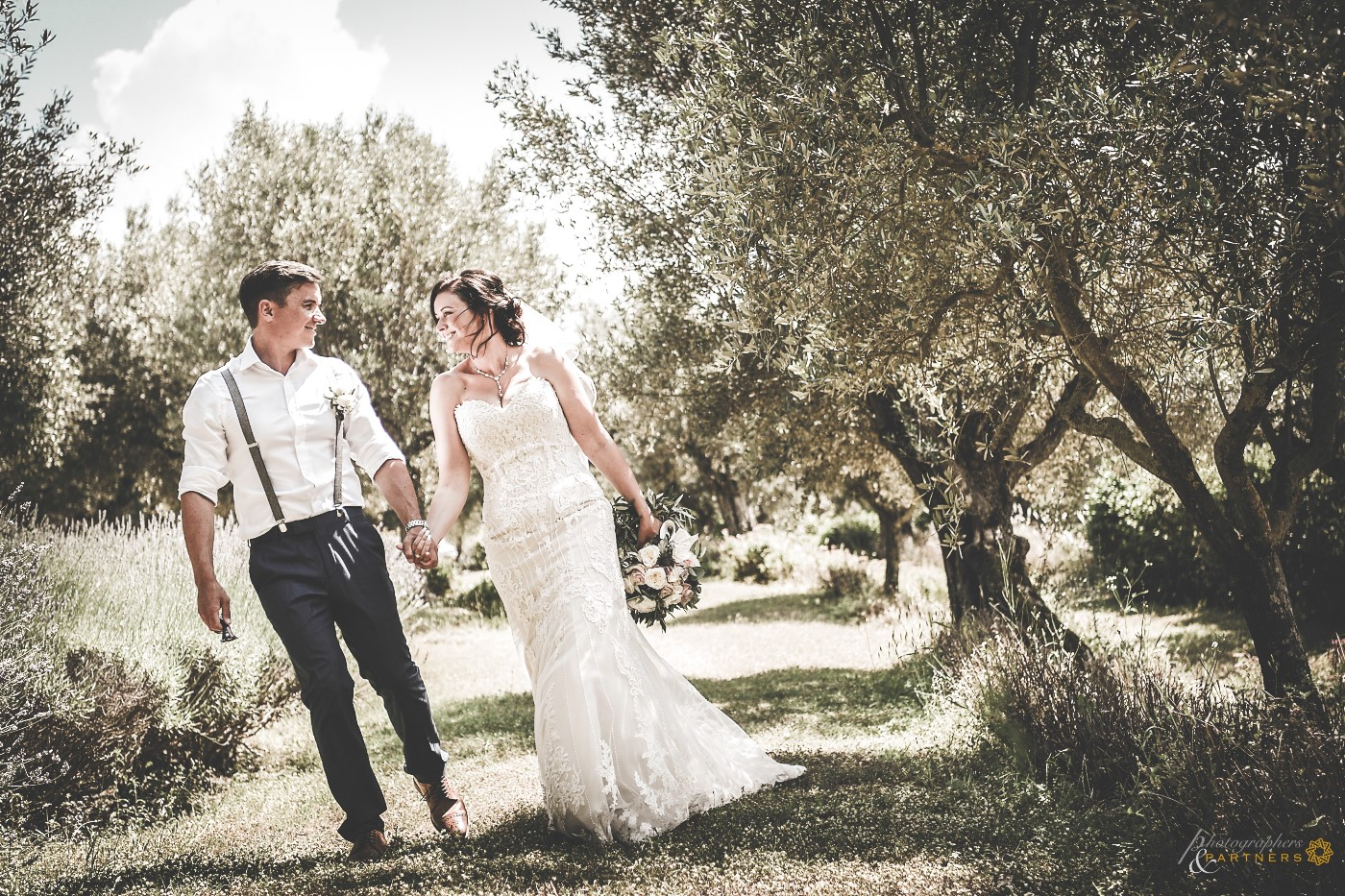 A walk among the olive trees...