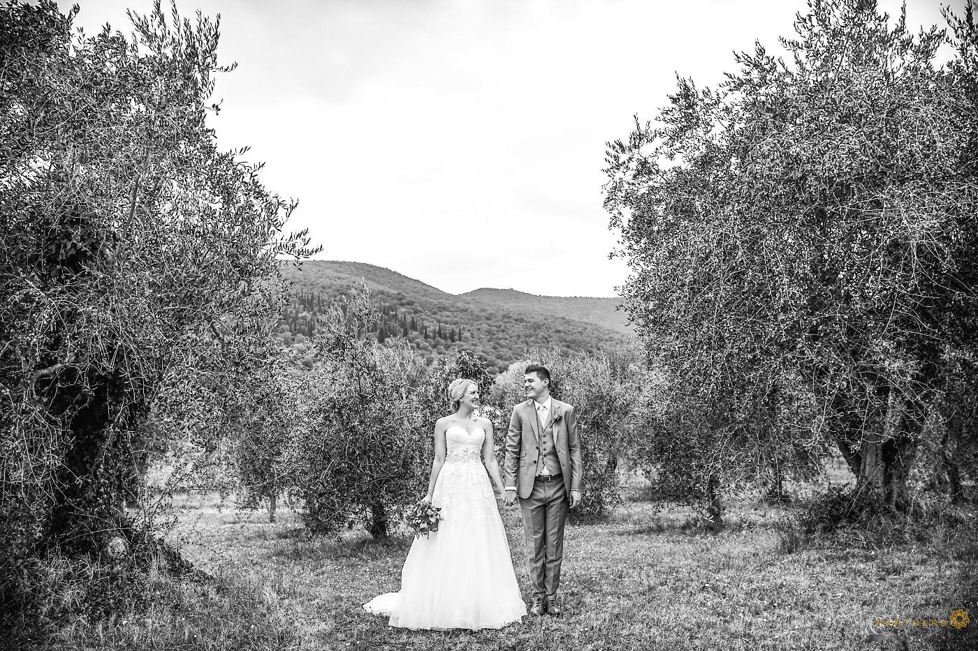 Among olive trees