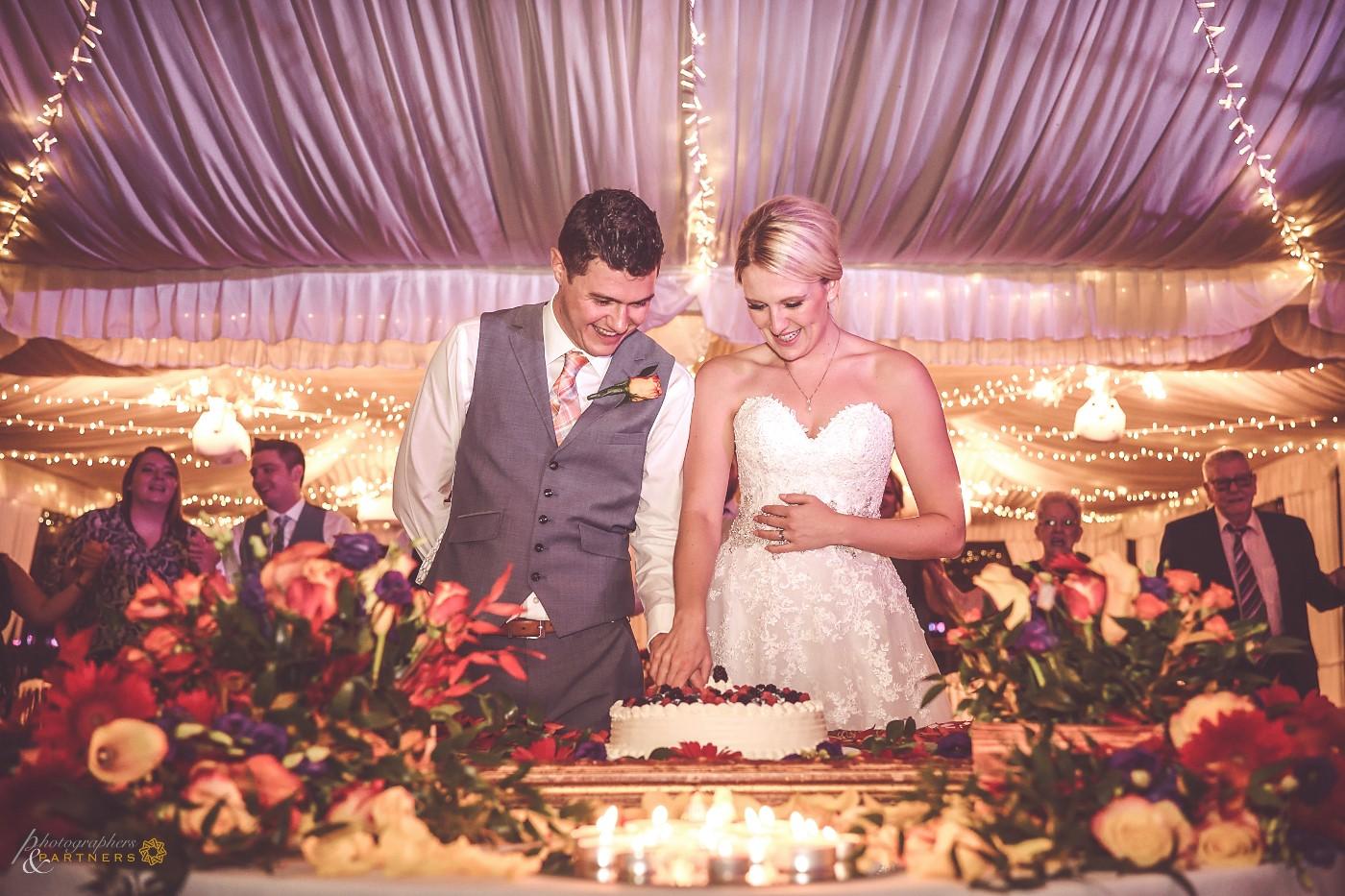 Cutting cake 🍰
