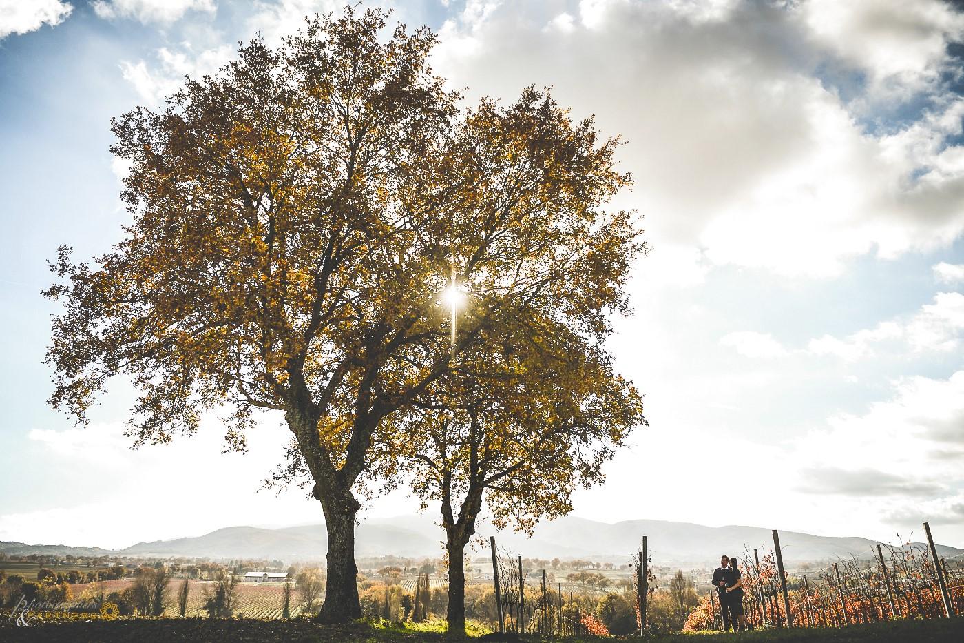 A beautiful postcard of the Umbrian landscape.