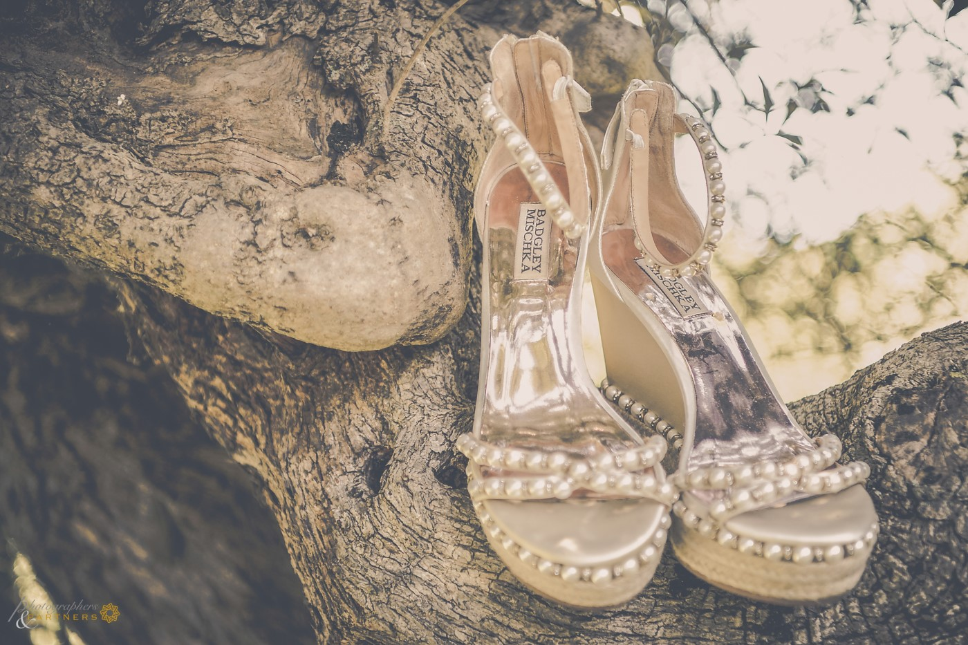 🍃 The shoes of the bride 🍃