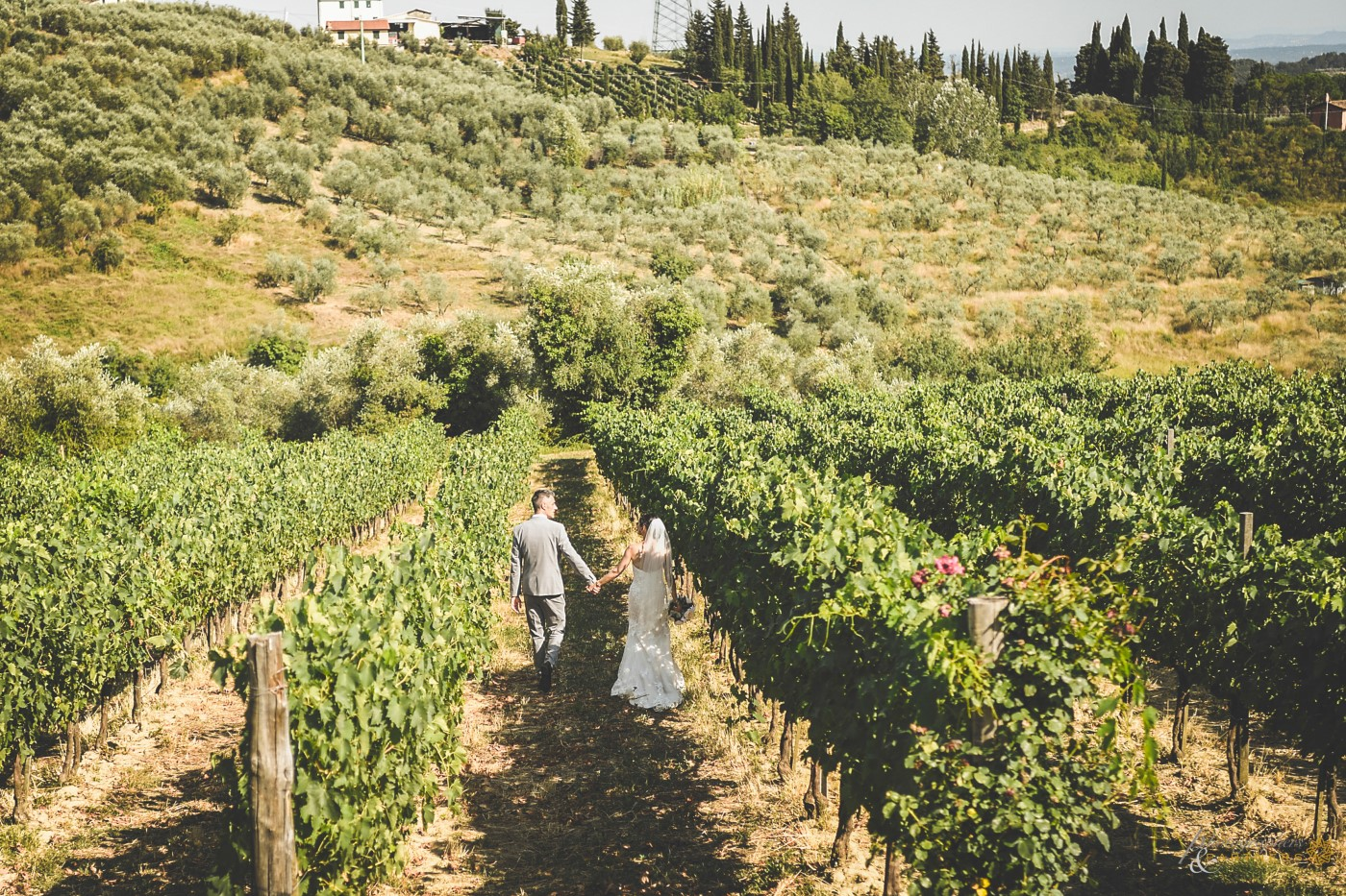 🍃 Walking in the vineyard 🍃
