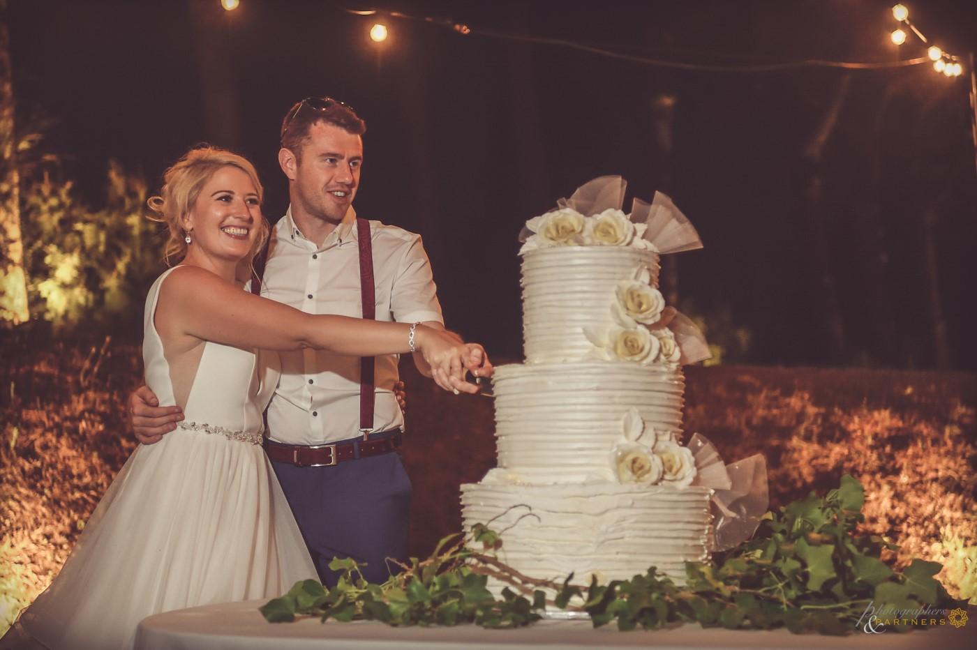 Wedding cake cutting 🍰